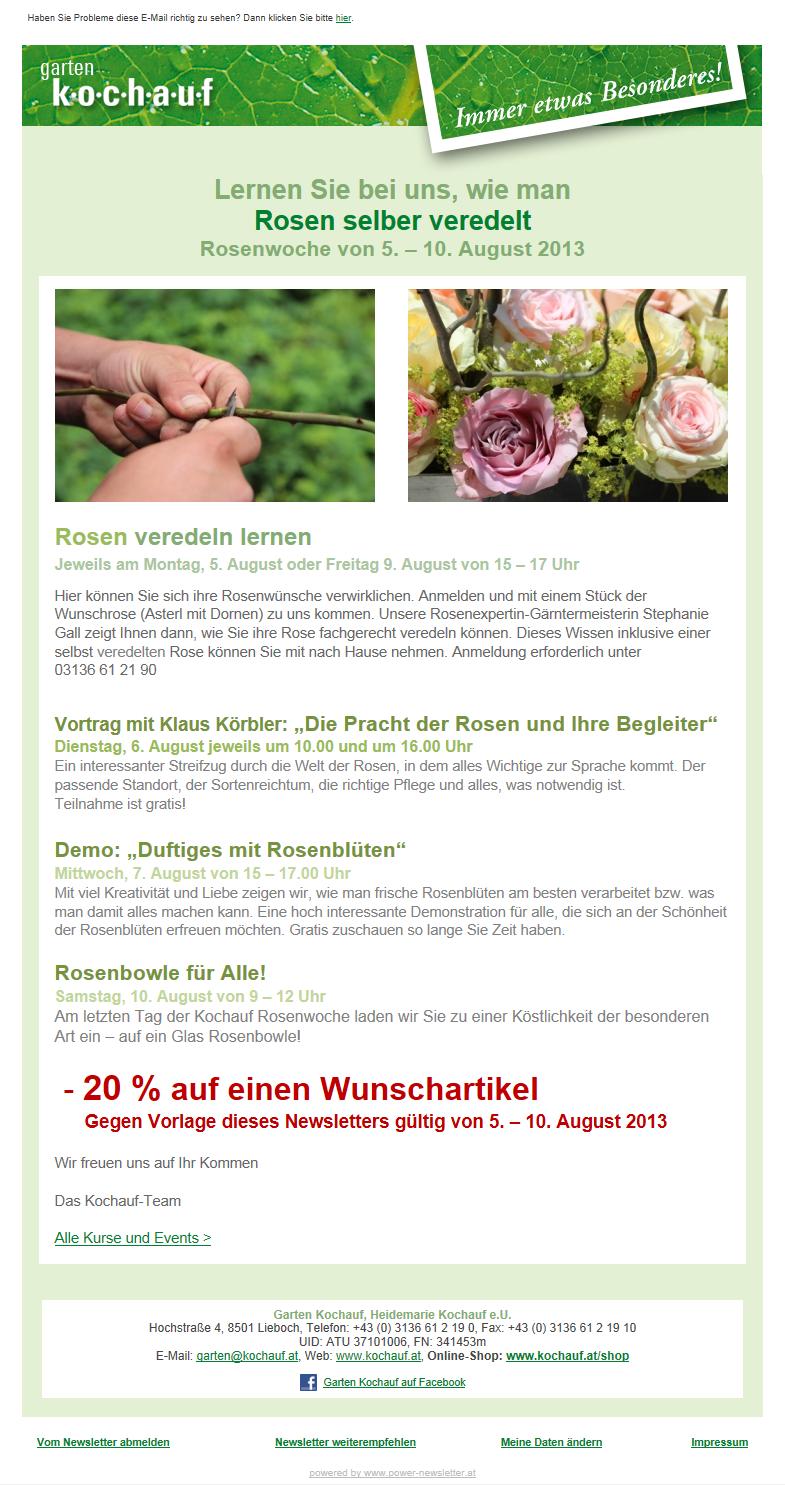 Webauftritt und Newslettersystem Graz