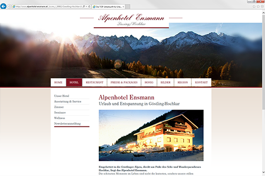 Learnconsult ihre internetagentur ihr komplettanbieter for Design alpenhotel