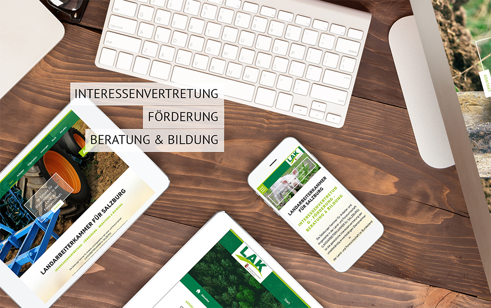 Homepage erstellen mit Suchmaschinenoptimierung Graz