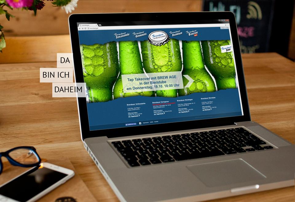 Programmierung Homepage und Webshop