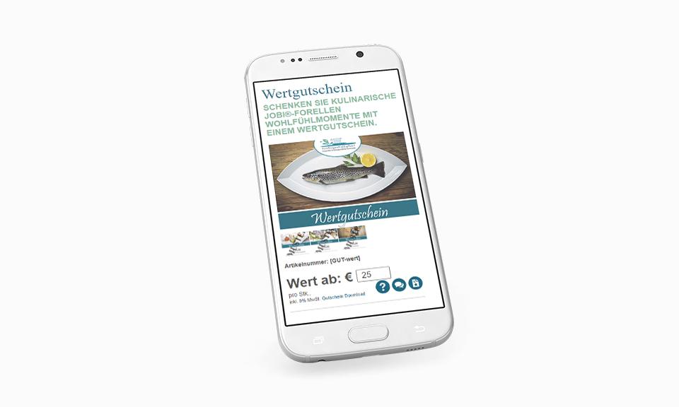 Webshop im responsive Design erstellen