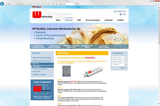 Programmierung Homepage