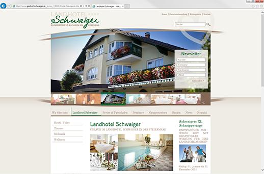 Erstellung Homepage mit CMS System