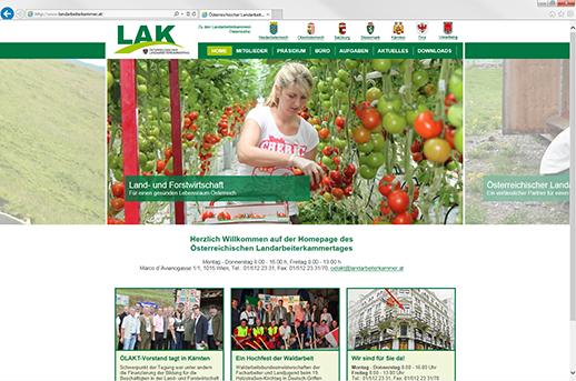 Grazer Homepage Agentur programmiert Homepage für ÖLAKT
